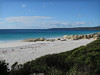 Cosy Corner South campground- Bay of Fires, Tasmania