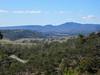 Tasmanian Bushland Garden - Buckland, Tasmania