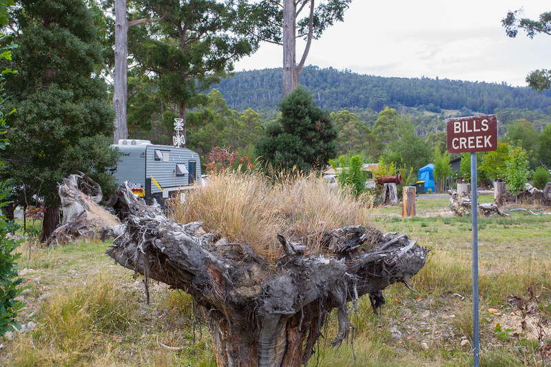 Left of Field - Mount Field National Park, Tasmania