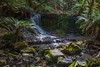 Horseshoe Falls - Mount Field National Park, Tasmania