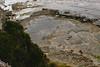 Tessellated Pavement - Eaglehawk Neck, Tasmania