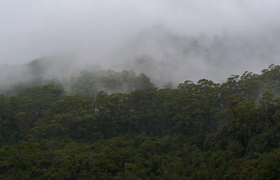 Gordon River - Strahan, Tasmania
