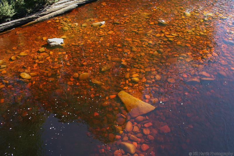 Huon River - Tahune AirWalk, Tasmania