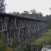 Stony Creek Trestle Bridge - Nowa Nowa, Victoria