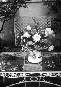 Rustic scene in black & white, roses & flowers in vintage vase on glass table with wrought iron accents, trellis against wall in background, Nantucket, MA.