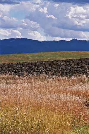 Patterns of grasses, cultivated field, and mountain range under cloudy skies, layers of color in Idaho.