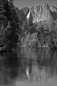 Yosemite Reflection - Yosemite National Park