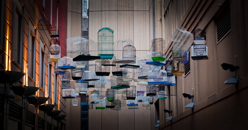 """This wonderful art installation in Angel place, Sydney.<br /> <br /> It is one of 8 installations that were part of the Sydney festival's """"Laneways By George!"""""""