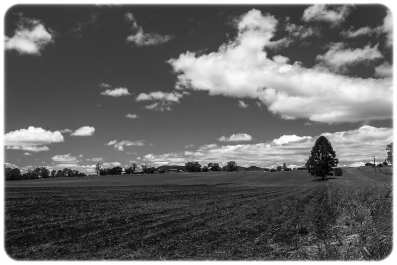 Farmlands Near Gloucester, NSW
