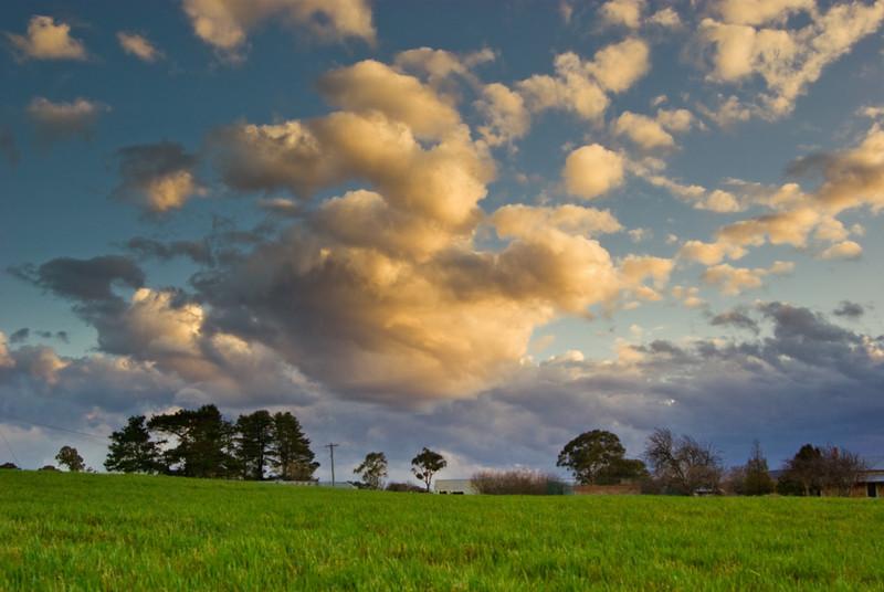 Green fields at Sunset under a Cloudy Sky