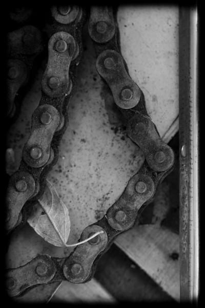 Drive Chain