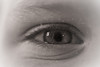 Eleanor's Eye in sepia