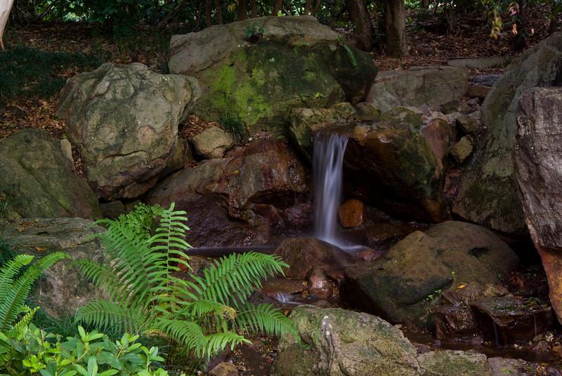 Waterfall and pond in the Japanese garden at Mt Coot-Tha botanic garden, Brisbane