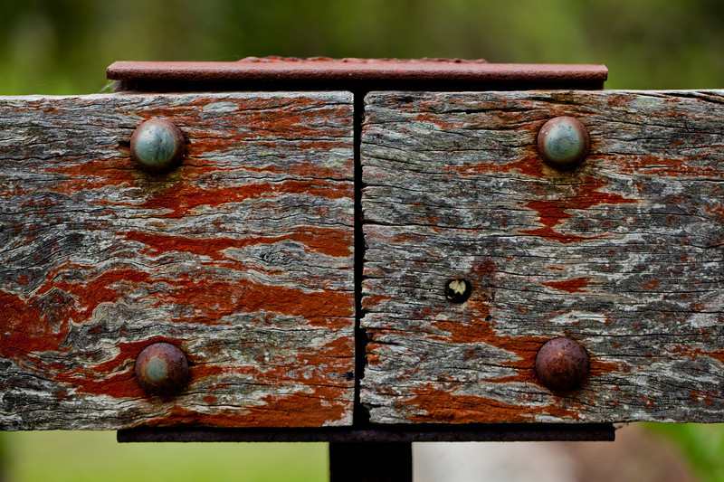 Lichen Covered TImber Fence Beam