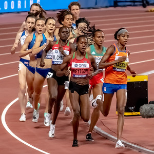 The Women's 1500 metres final during day nine of 17th IAAF World Athletics Championships Doha 2019 at Khalifa International Stadium on October 05, 2019 in Doha, Qatar. Photo by Tom Kirkwood/SportDXB