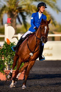 taken during the National Show Jumping event at the Emirates Equestrian Center, nr Bab Al Shams Desert Resort and Spa on 12th December 2015. Photo by Tom Kirkwood/SportDXB.