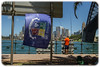 Follow the Wynberg Flag 175: Destination Sydney: Fishing Under the Harbour Bridge
