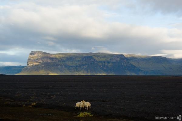 IcelandSeptember 1, 2007Image Number: 200704927