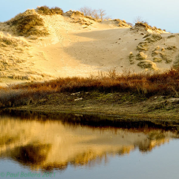 Blurred dune reflection (best seen in larger sizes)