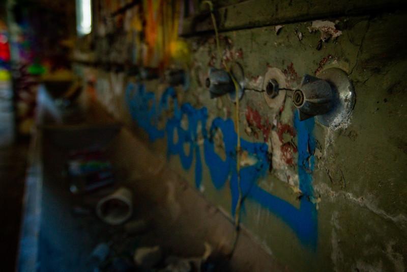Glebe Tram Sheds: Bathroom