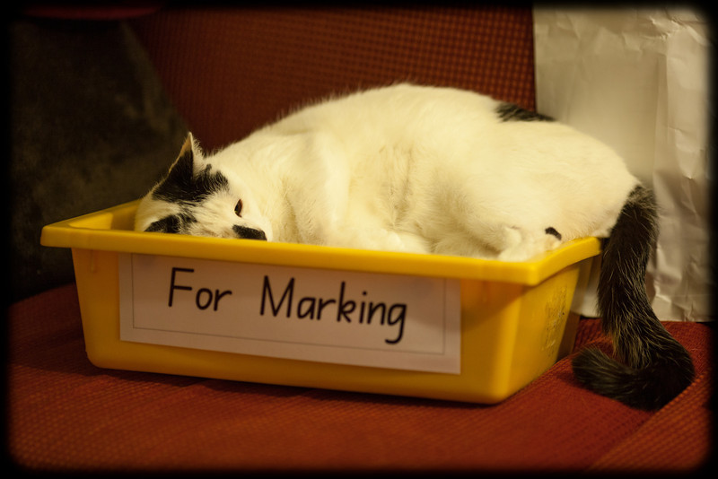 For Marking