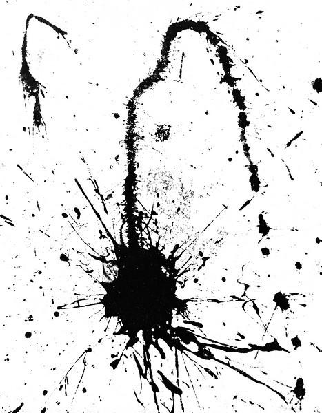 Black Paint Splattered on White