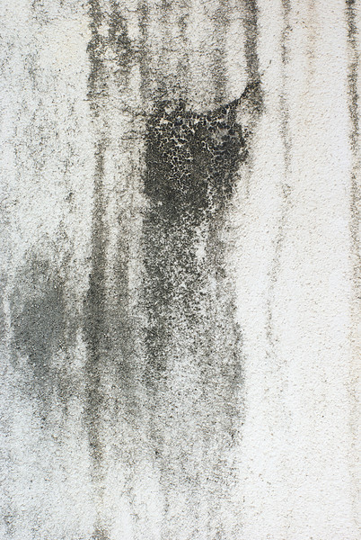 Grunge Texture: Dirty Wall