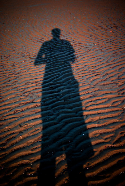 An ominous shadow on the rippled sand