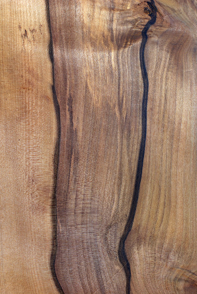 Wood Texture: Black Heart Sassafras