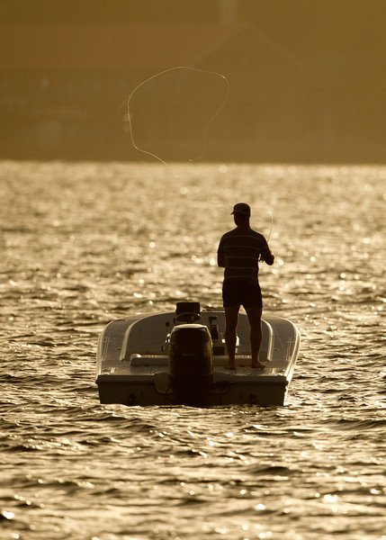 Fly Fishing on Sydney Harbour at Dusk