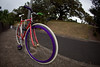 Fisheye Fixie