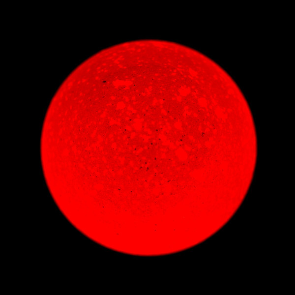 Planetary Eggsploration