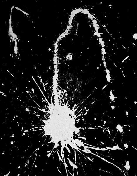 White Paint Splattered on Dark Concrete