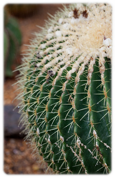 Super Spiky