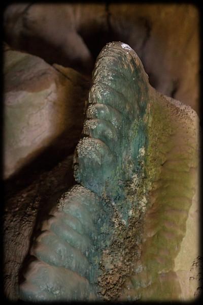 Stromatalite in The Nettle Cave: Jenolan Caves: NSW, Australia