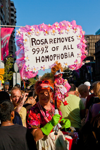 Rosa: A Cure for Homophobia