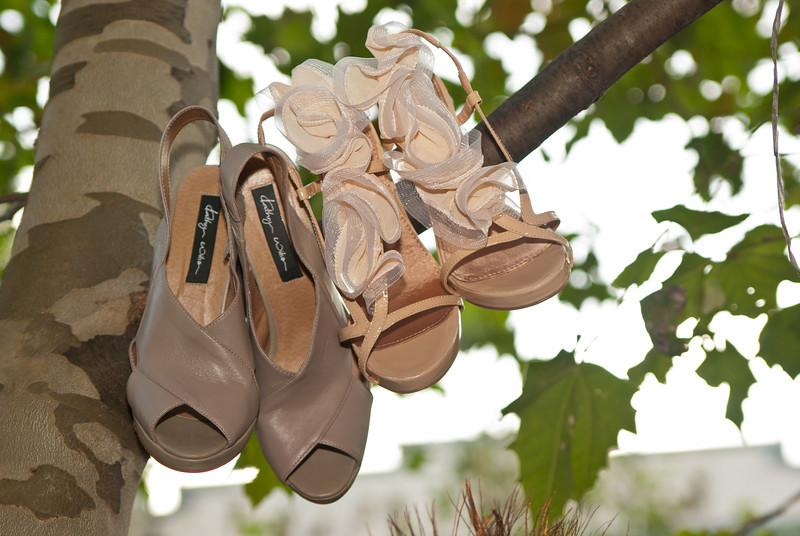 The Shoe Tree