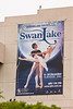 Swan Lake Poster at QPAC, Brisbane