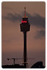 Sydney Tower at Dusk