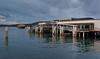 Manly Wharf and Approaching Ferrty on a Gloomy Evening