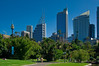 Sydney CIty from the Royal Botanic Gardens on a Clear Day