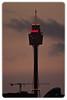 Sydney Tower at Dusk