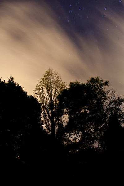 Night Skies Over Balgowlah