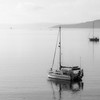 Boats at St Mawes