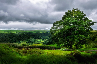 Looking over the Gwaun Valley