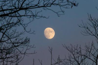 Moon Rise at UACNJ
