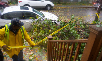 102912, Boston, MA - DPW  ForemanTony Harris, 53, closes off the sidewalk around a tree that fell on some powerlines and a fence on Hollander Street after it was brought down by Hurricane Sandy's winds. Photo by Ryan Hutton