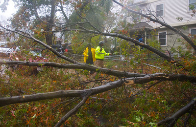 102912, Boston, MA - DPW Foreman Tony Harris, 53, left, and Districts 10 and 2 Supervisor Darrell Kaiser, 38, survey a tree blocking Crawford Street that was brought down by Hurricane Sandy's winds. Photo by Ryan Hutton