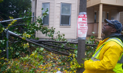 102912, Boston, MA - DPW  ForemanTony Harris, 53, surveys a tree that fell on some powerlines and a fence on Hollander Street after it was brought down by Hurricane Sandy's winds. Photo by Ryan Hutton