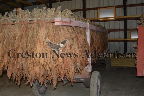 02-01 Tobacco farmers